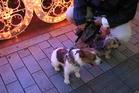高崎タカシマヤで恒例の電飾点灯